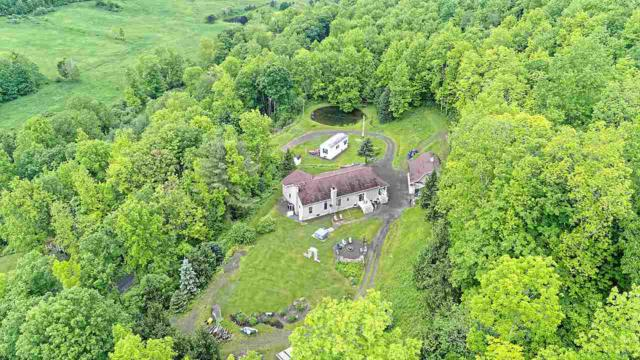 679 Westkill Rd, Jefferson, NY 12093 (MLS #201921910) :: Picket Fence Properties