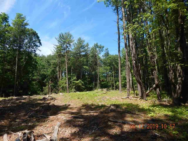 0 Rt  67, Cairo, NY 12413 (MLS #201922604) :: Victoria M Gettings Team