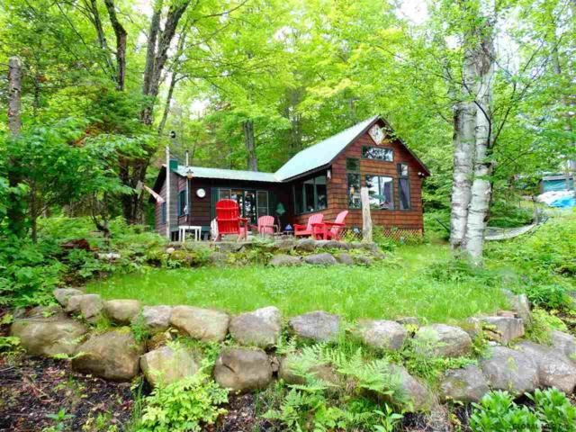 129 Beech Trail Rd, Indian Lake, NY 12842 (MLS #201922659) :: 518Realty.com Inc