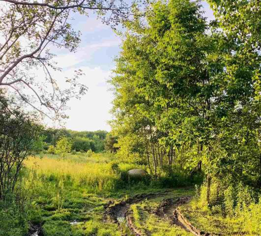 Bolt Rd, Glenville, NY 12302 (MLS #201922846) :: Victoria M Gettings Team