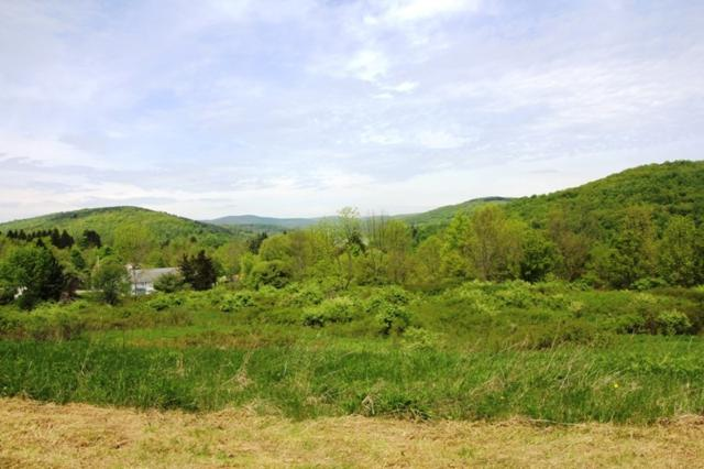 State Route 10, Richmondville, NY 12149 (MLS #201922878) :: Victoria M Gettings Team
