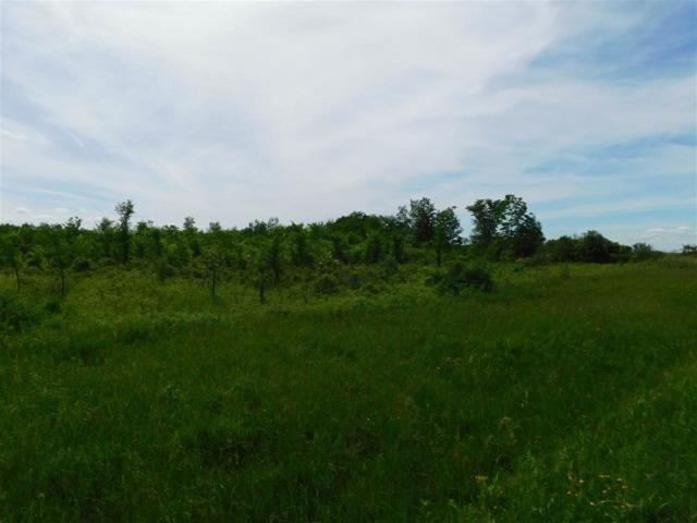Millers Corners Rd, Delanson, NY 12053 (MLS #201922884) :: Victoria M Gettings Team