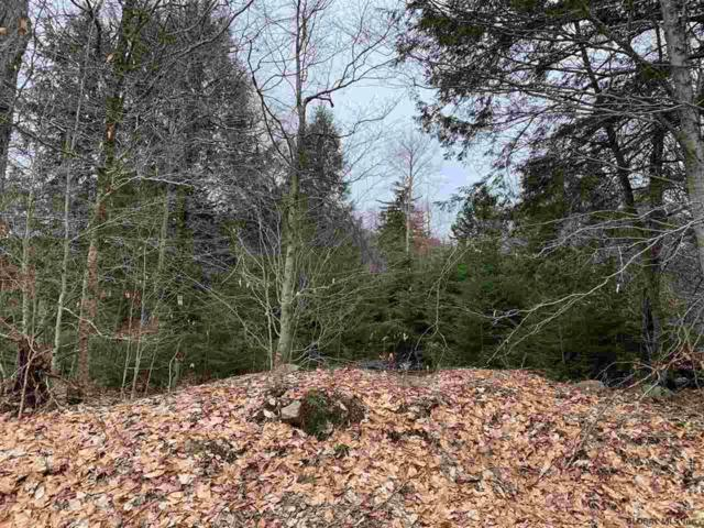 70.1 Acres Nys Rt 8, Hoffmeister, NY 13353 (MLS #201923578) :: Picket Fence Properties