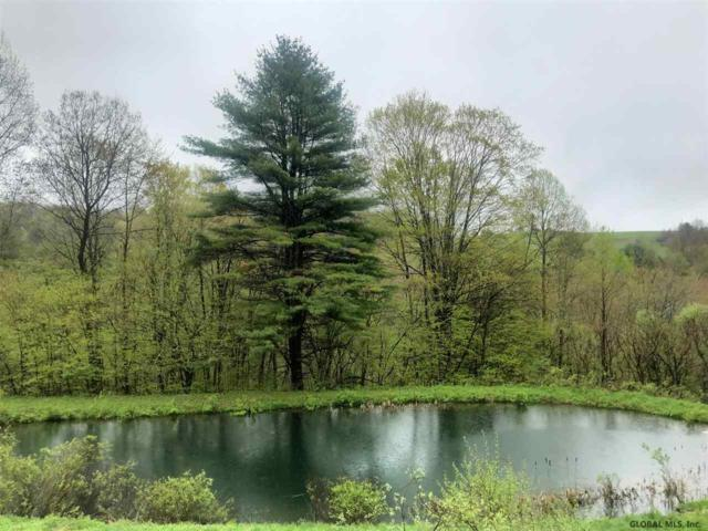 310 Dog Hill Rd, Maryland, NY 12116 (MLS #201923642) :: Picket Fence Properties
