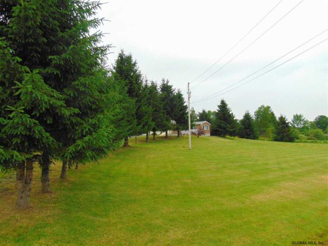 2805 State Route 10, Summit, NY 12175 (MLS #201924176) :: Picket Fence Properties
