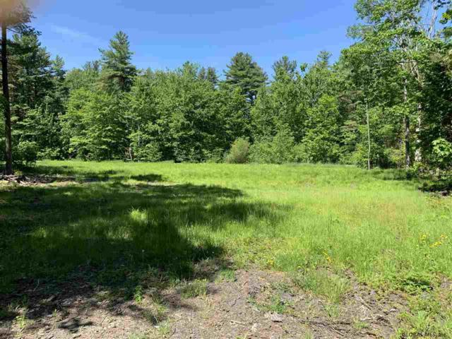 0000 County Route 412, Westerlo, NY 12193 (MLS #201924479) :: Picket Fence Properties