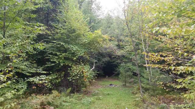 54 Lincoln Mountain Rd, Wilton, NY 12822 (MLS #201924520) :: Picket Fence Properties