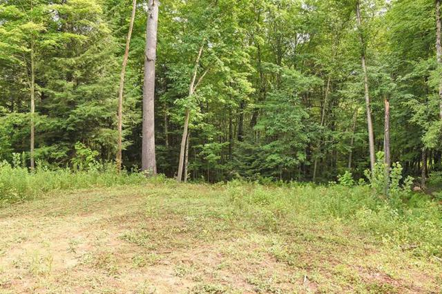 4551 Nys Route 9N, Porter Corners, NY 12859 (MLS #201924987) :: Victoria M Gettings Team