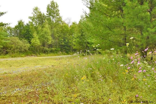 4555 Nys Route 9N, Porter Corners, NY 12859 (MLS #201924990) :: Victoria M Gettings Team