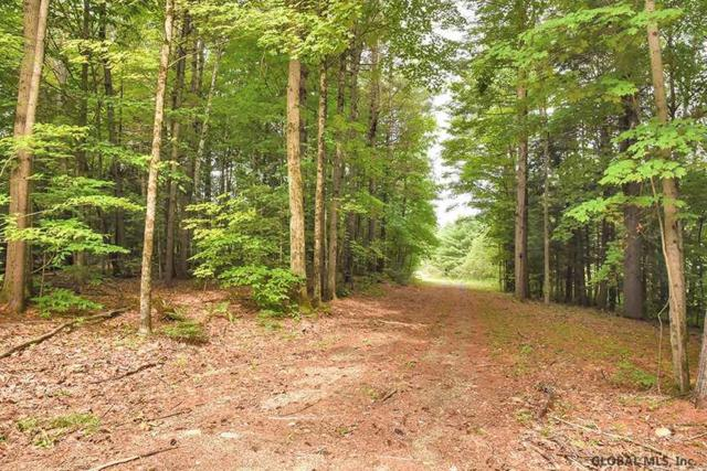 4559 Nys Route 9N, Porter Corners, NY 12859 (MLS #201924993) :: Victoria M Gettings Team