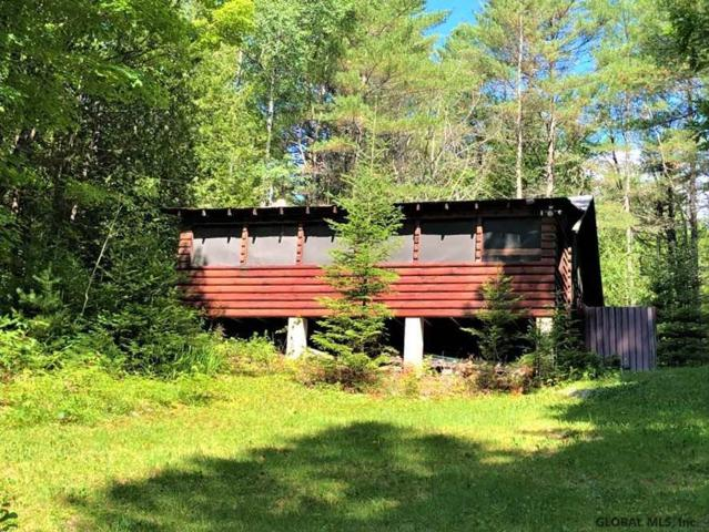 269 Trout Brook Rd, Olmsteadville, NY 12857 (MLS #201925087) :: Picket Fence Properties