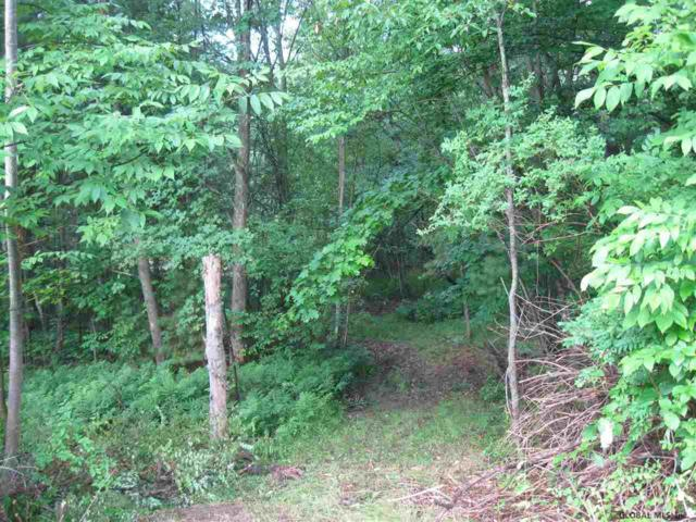 0 Miller Hill Rd, Averill Park, NY 12018 (MLS #201925380) :: Picket Fence Properties