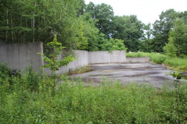 269 Oak Meadows Dr, Schoharie, NY 12157 (MLS #201925535) :: Picket Fence Properties
