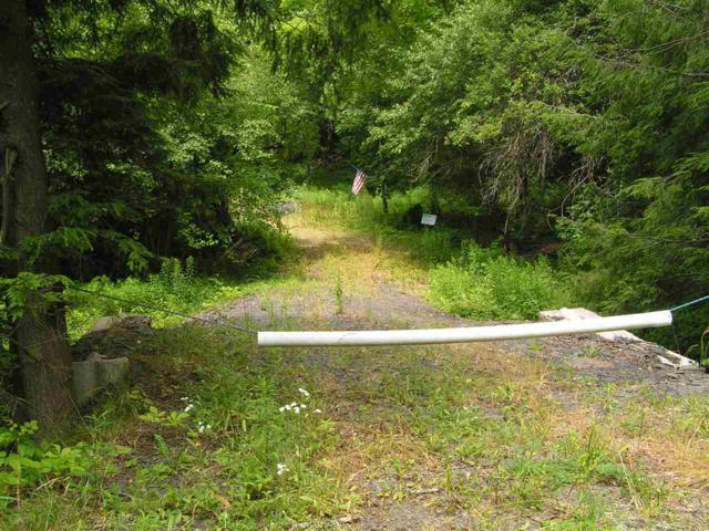 Mooney Rd, Worcester, NY 12197 (MLS #201925551) :: Picket Fence Properties