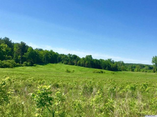 Lower Copeland Hill Rd, New Scotland, NY 12159 (MLS #201925715) :: Picket Fence Properties