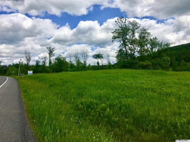 Lower Copeland Hill Rd, New Scotland, NY 12159 (MLS #201925717) :: Picket Fence Properties