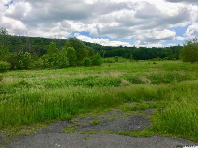 Indian Fields Rd, New Scotland, NY 12159 (MLS #201925718) :: 518Realty.com Inc