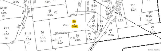State Route 144, New Baltimore, NY 12124 (MLS #201926535) :: Picket Fence Properties