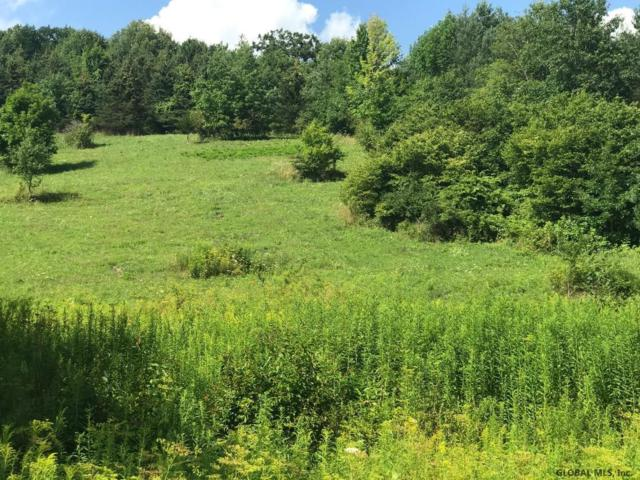 Sawyer Hollow Rd, Fulton, NY 12175 (MLS #201926954) :: Picket Fence Properties