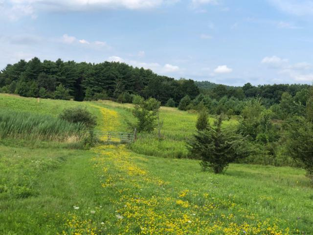 Gedney Hill Rd, Coeymans Hollow, NY 12046 (MLS #201927457) :: Picket Fence Properties