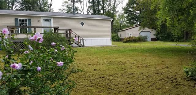 185 W Moorehouse Rd, Cairo, NY 12413 (MLS #201930214) :: Picket Fence Properties
