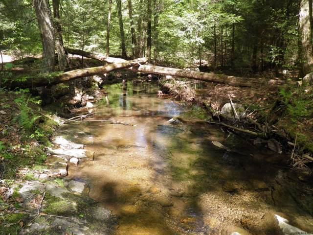 Hogtown Rd, Fort Ann, NY 12827 (MLS #201930256) :: Picket Fence Properties