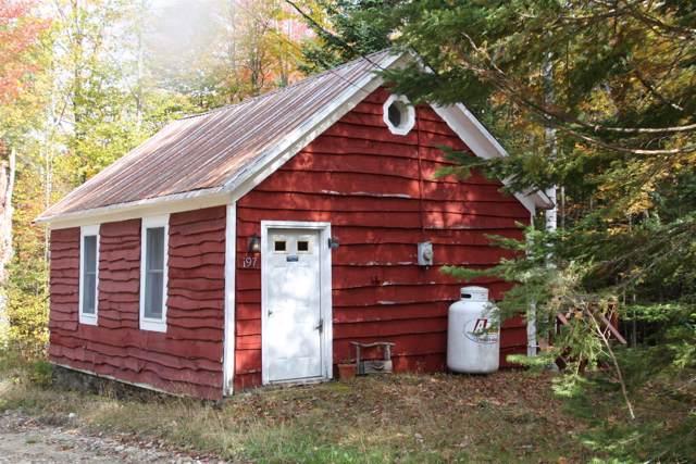 197 Henry Wescott Rd, Athol, NY 12885 (MLS #201930454) :: Picket Fence Properties