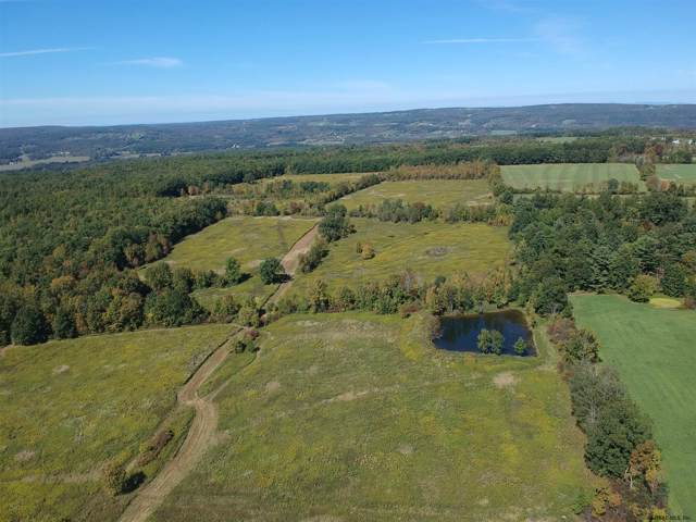 4081 State Route 7, Schoharie, NY 12157 (MLS #201930875) :: Picket Fence Properties