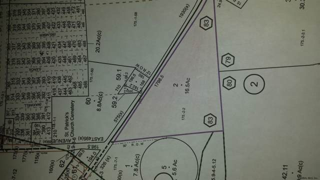 2128 State Highway 67, Johnstown, NY 12095 (MLS #201931176) :: Picket Fence Properties