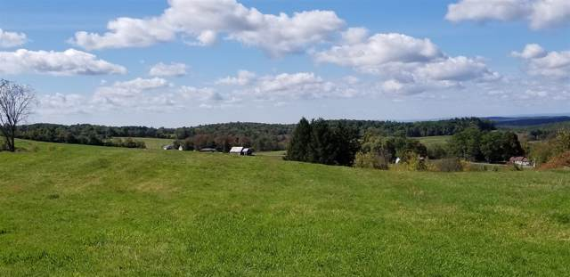 0 Lower Pine Valley, Hoosick Falls, NY 12090 (MLS #201931385) :: Picket Fence Properties