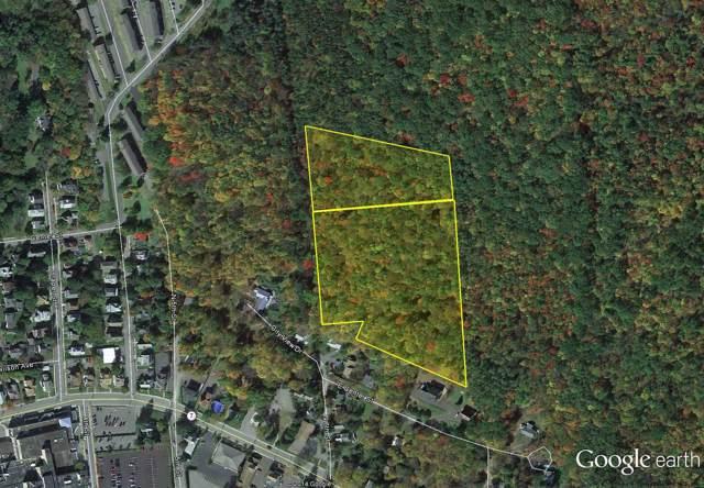 0 North 6Th Av, Oneonta, NY 13820 (MLS #201931677) :: Picket Fence Properties