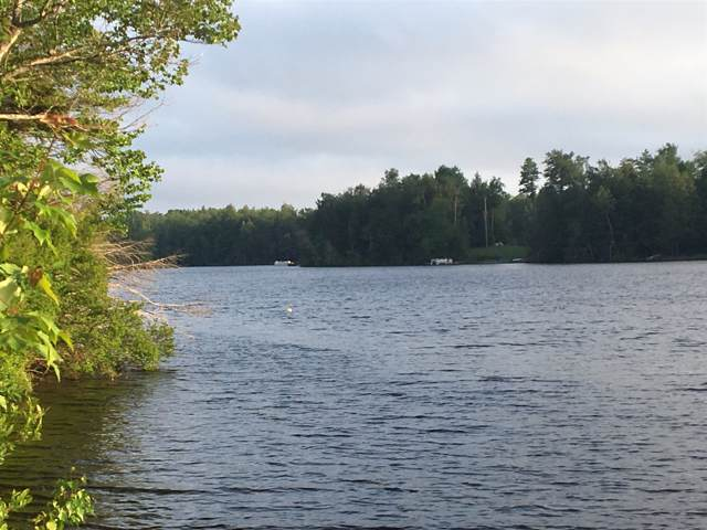 230 Pond View Rd, Petersburgh, NY 12138 (MLS #201931796) :: 518Realty.com Inc