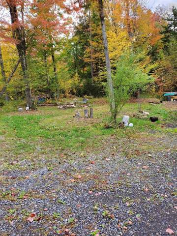 116 Jim's Hill Rd, Lake Pleasant, NY 12108 (MLS #201932028) :: Picket Fence Properties