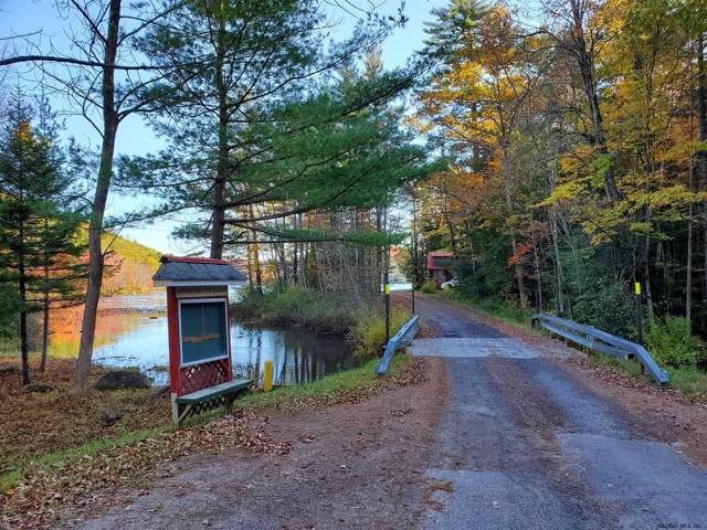 225 East Stoner Lake Rd, Caroga, NY 12032 (MLS #201932790) :: 518Realty.com Inc