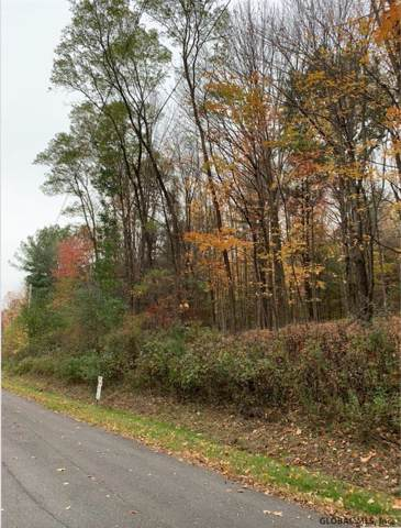 Upper Cady Rd, Old Chatham, NY 12136 (MLS #201933142) :: Picket Fence Properties