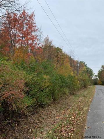 Upper Cady Rd, Old Chatham, NY 12136 (MLS #201933148) :: Picket Fence Properties