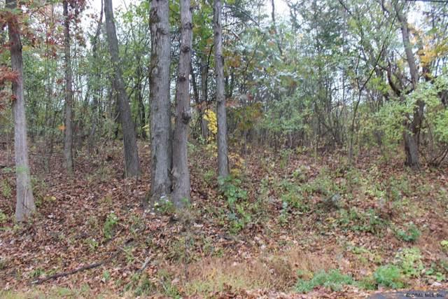 40 Vosenkill Rd, Catskill, NY 12414 (MLS #201933208) :: Picket Fence Properties
