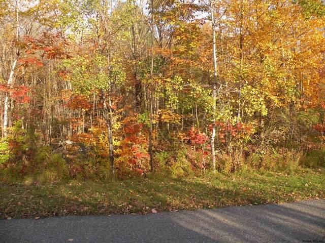 Campbell Rd, Ashland, NY 12407 (MLS #201933362) :: Picket Fence Properties
