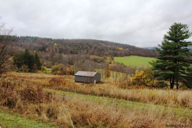 536 East Hill Rd, Broome, NY 12122 (MLS #201934320) :: Picket Fence Properties