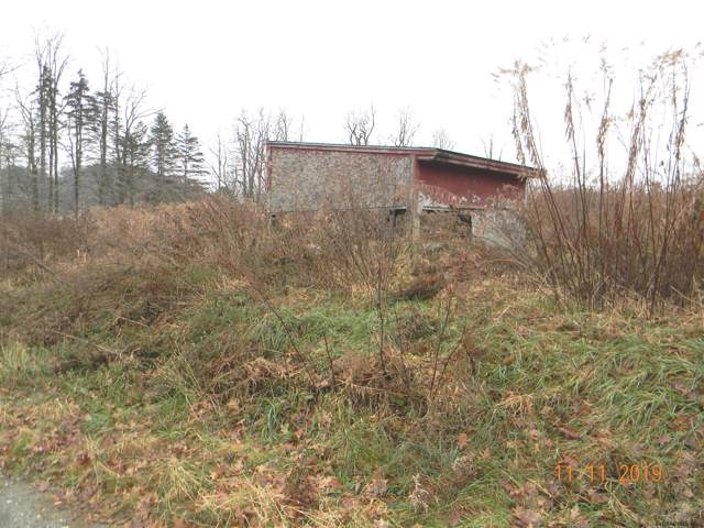 27 Hunt La, Eagle Bridge, NY 12057 (MLS #201934948) :: Picket Fence Properties