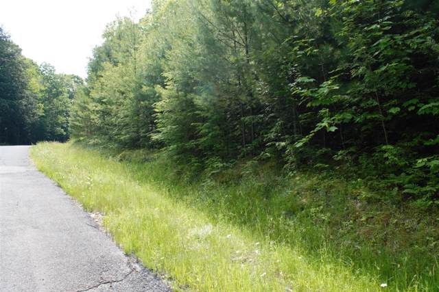 Lot 4 Spring Woods Rd, Diamond Point, NY 12845 (MLS #201935385) :: Picket Fence Properties