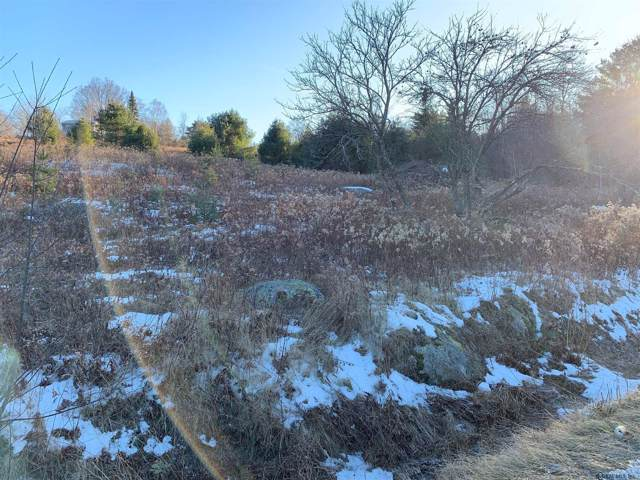 2460 Ensign Pond Rd, Moriah, NY 12960 (MLS #201935656) :: Picket Fence Properties