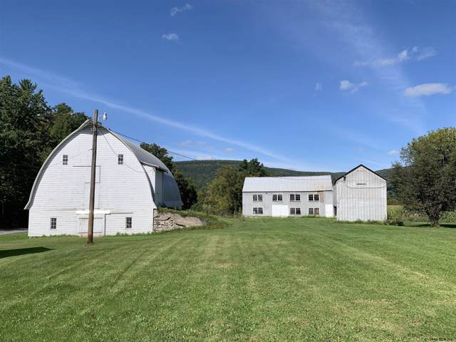4989 State Route 30, Schoharie, NY 12157 (MLS #201936519) :: Picket Fence Properties