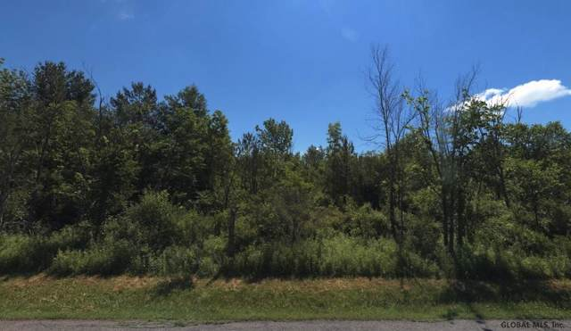 00 State Highway 161, Amsterdam, NY 12010 (MLS #202010226) :: 518Realty.com Inc