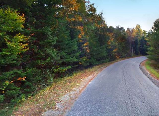 North Gore Rd, North Creek, NY 12843 (MLS #202011344) :: Picket Fence Properties