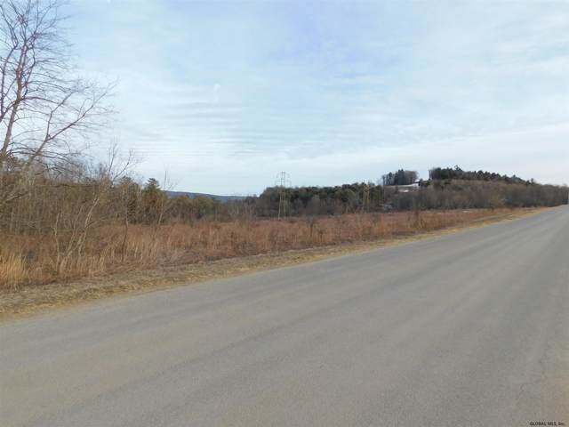 00 Mcdougall Rd, Pattersonville, NY 12137 (MLS #202012589) :: 518Realty.com Inc