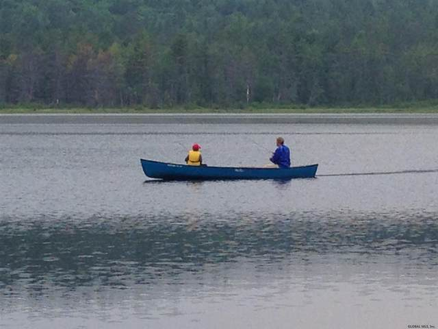 000 Beaver Dam Rd, Schroon Lake, NY 12870 (MLS #202013390) :: 518Realty.com Inc