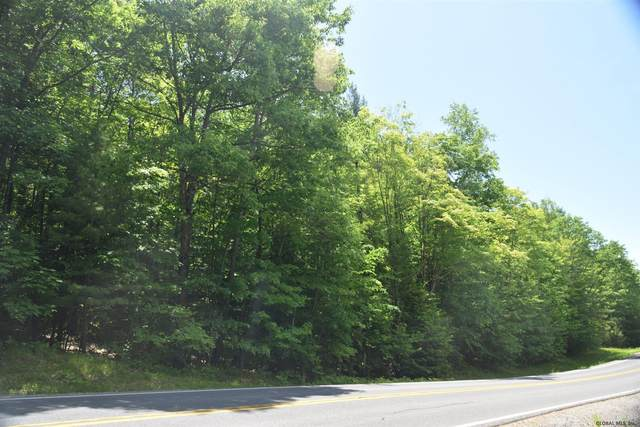 188 Edgecomb Pond Rd, Bolton Landing, NY 12814 (MLS #202014757) :: 518Realty.com Inc