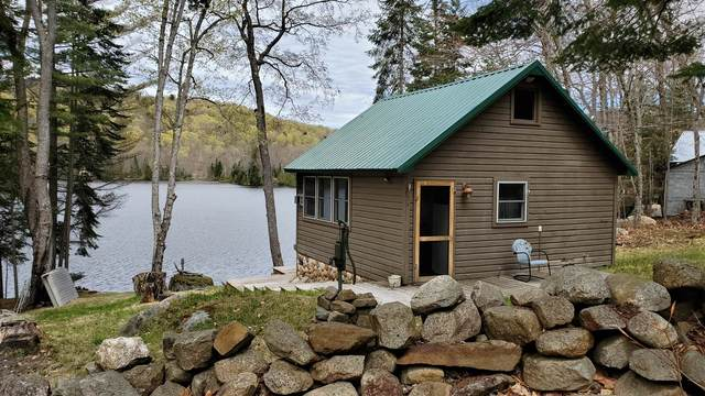 1408 Goodnow Flow Rd, Newcomb, NY 12852 (MLS #202017782) :: 518Realty.com Inc