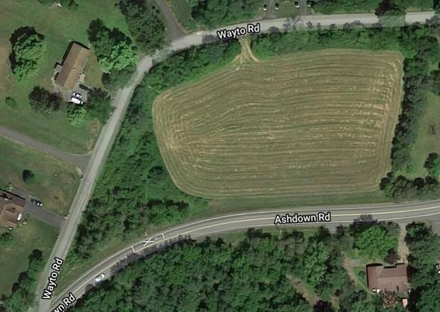 11 Wayto La, Clifton Park, NY 12019 (MLS #202017879) :: 518Realty.com Inc